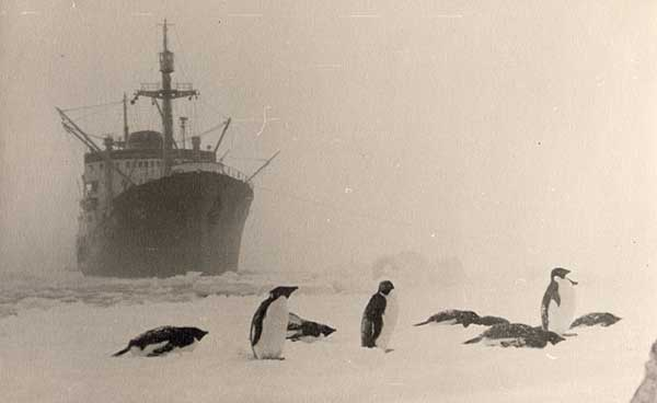 Soviet-Antarctic-Expedition-12