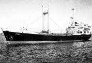 Boruta - Rokita model ship plans livestock carrier