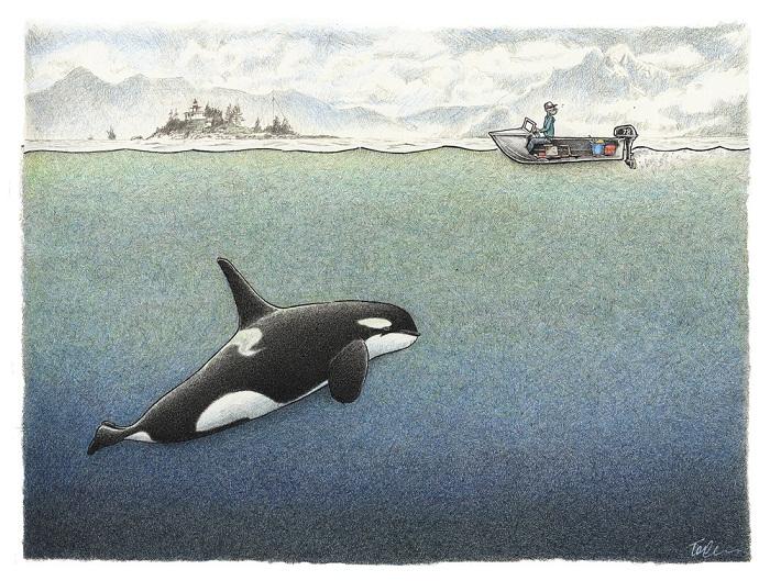 tom crestodina marine drawings